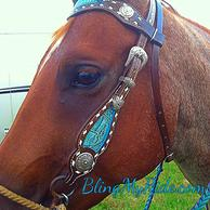 Buck stitched browband headstall.