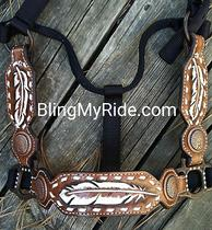 Hand tooled painted buckstitched feather halter with cheeks to match.