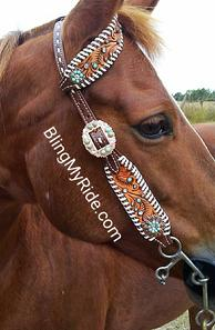 Hand tooled, whipstitched, buckstitched and blinged single ear headstall.