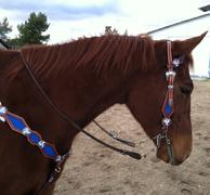Blue stingray inlay, Sapphire and Crystal AB bling tack set w/ single ear.