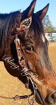 Hand tooled headstall w/ black inlay and black buckstitch. Antique silver hardware.