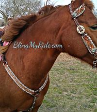 Hand tooled and whipstitched tack set with Swarovski and Sleeping Beauty turquoise bling.