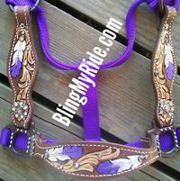 hand tooled and painted feathe blingr bronc halter.