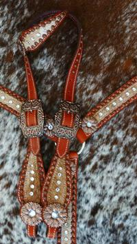 Bling tack set with daisy conchos.