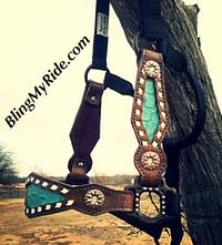 Buckstitched and bling bronc style halter.